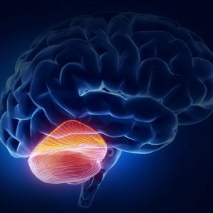 Мозжечковая стимуляция